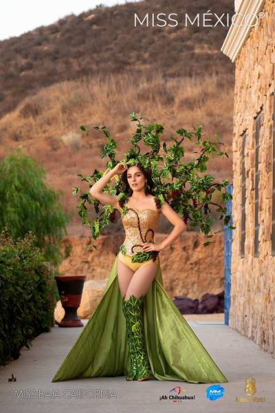 """2020 """"Miss Mexico"""" Contestants In National Dresses"""