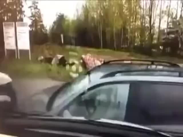 Brutal Finnish Police