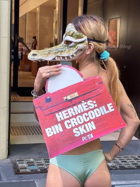 Animal Rights Activists In Bikinis And Masks Protest Against Cruelty To Crocodiles