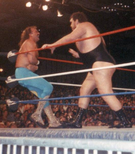 Gigantic Facts About Andre The Giant