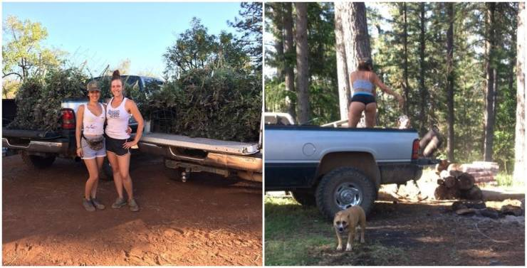 These Three Girls Live In Californian Wilds, Grow Marijuana, And Fight Bears (Maybe)