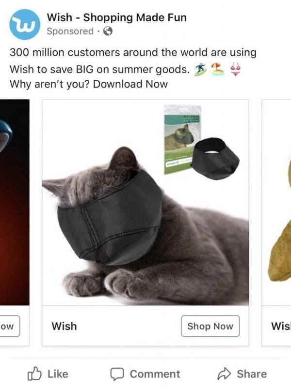 Wish.com Recommends Some Truly Twisted Stuff…
