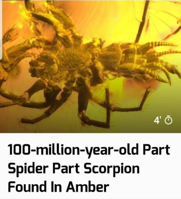 That's A Real Big NOPE…