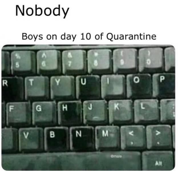 Yay, NSFW Memes!
