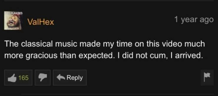 Pornhub Also Has Pretty Good Comments, You Know…