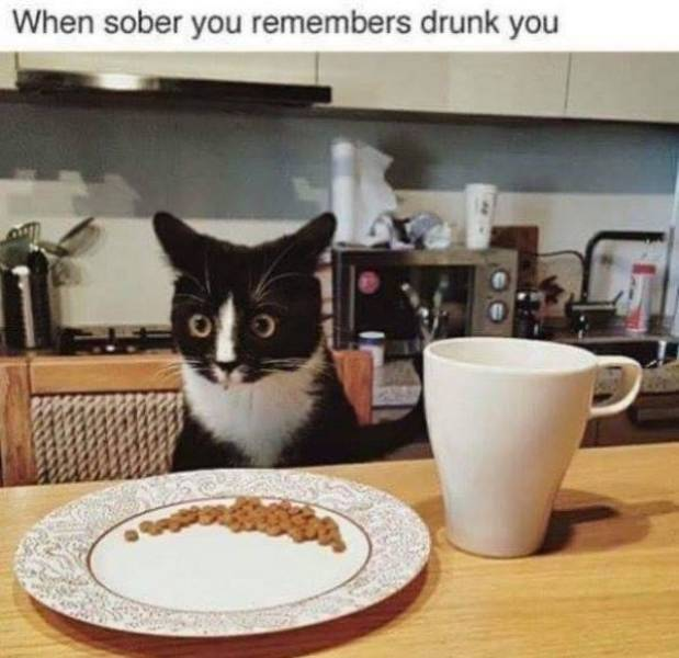And Drunk They Were…