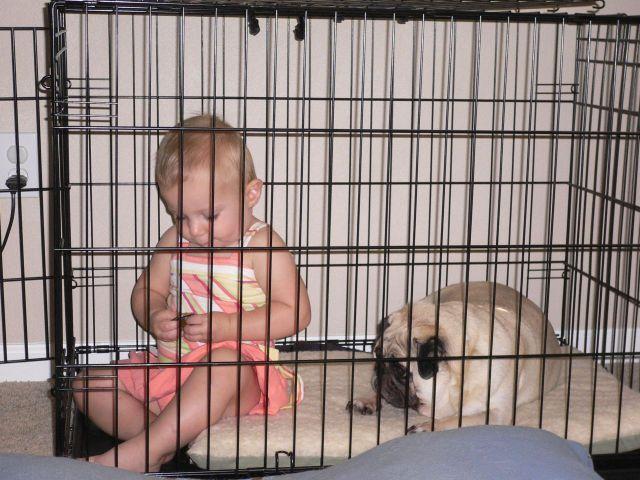 Children in cages (30 pics)