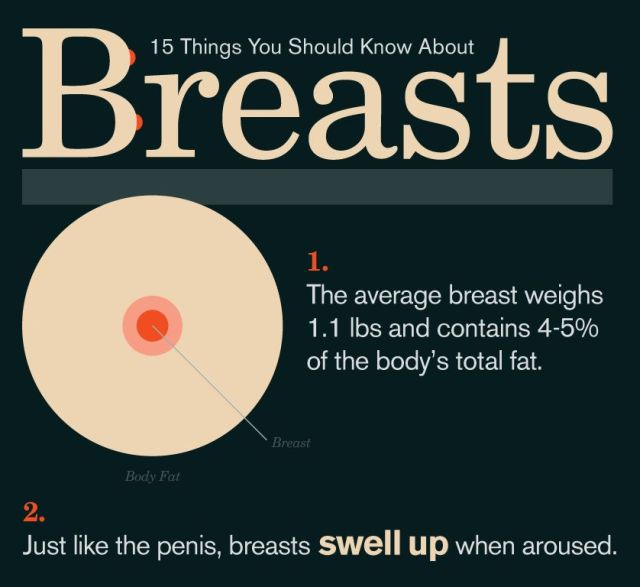 15 Things You Should Know About Breasts