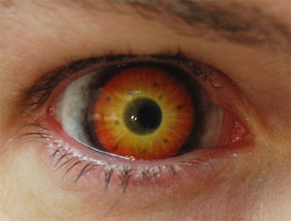 Eerie Eyeball Covers