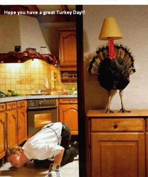 Funny Thanksgiving Moments
