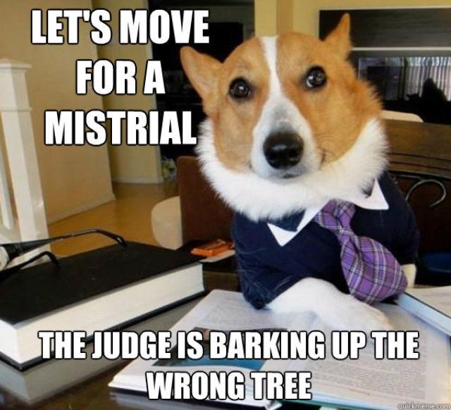 The Hilarious Lawyer Dog Meme