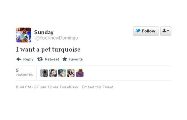 Twitter Hilarious Misspellings
