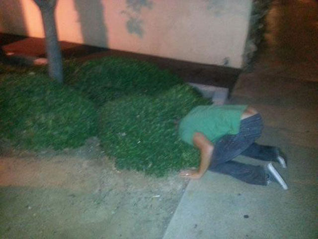 Hilarious Drunk and Wasted People. Part 17
