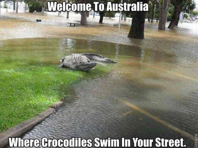 There Is Nothing Normal about Australia