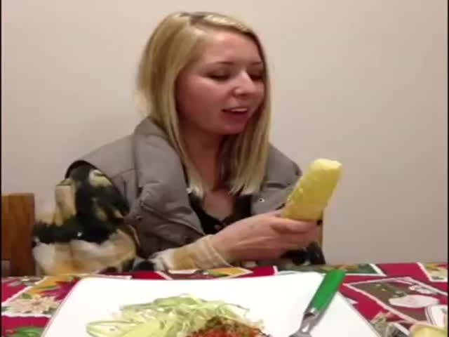Funny Vines by Andrew Marbach