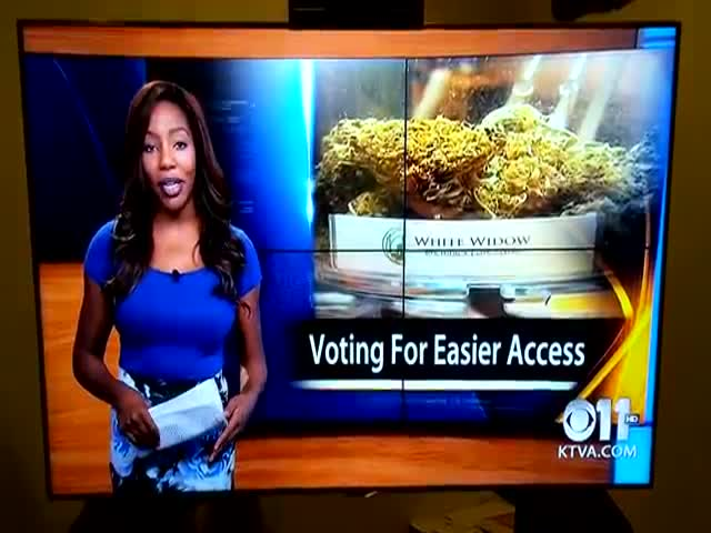 Reporter Quits Her Job Live on Air like a Boss  (VIDEO)