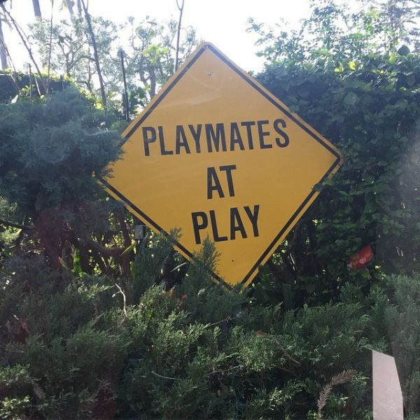This Is What Really Goes on in the Playboy Mansion