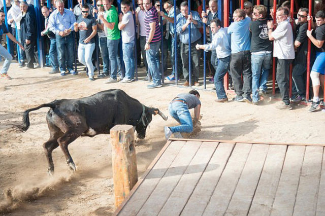 Guy Gets Stabbed in the Butt by an Angry Bull